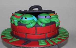 Ninja TMNT Birthday Cake